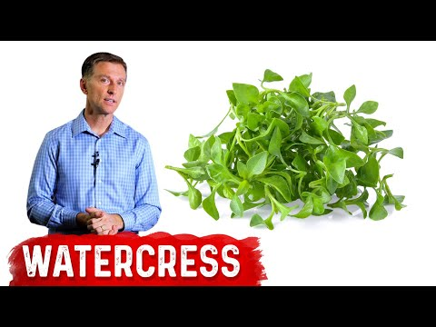 The Benefits of Watercress