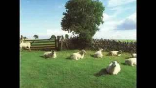 Watch KLF Wichita Lineman Was A Song I Once Heard video
