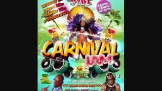DJ WALLY - Carnival Jam 2012 Promo Mix Part 2 [Rdx, Mr vegas, SamX, Young Chang, Stylo g]