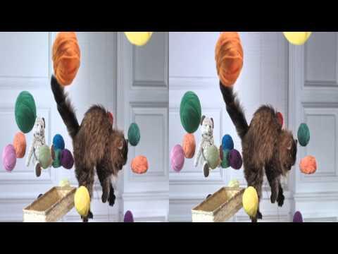 3D Video Demo Samsung