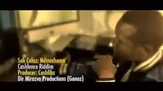 Seh Calaz - Ndinochema(Officail Music Video)2014