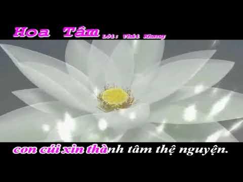 Hoa Tâm ( Nhạc Phật Giáo)