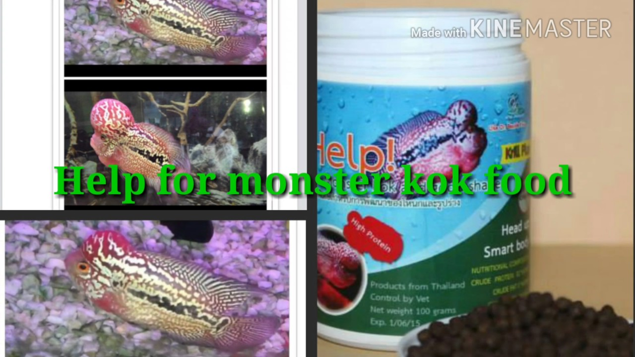 Help For Monster Kok Food By Cz Aqua Products Youtube