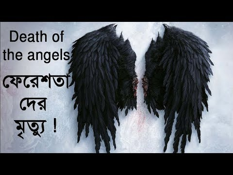 Death of the angels ! Mysterious world bangla !