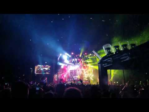 Bassnectar Bass Head at Electric Forest 2017