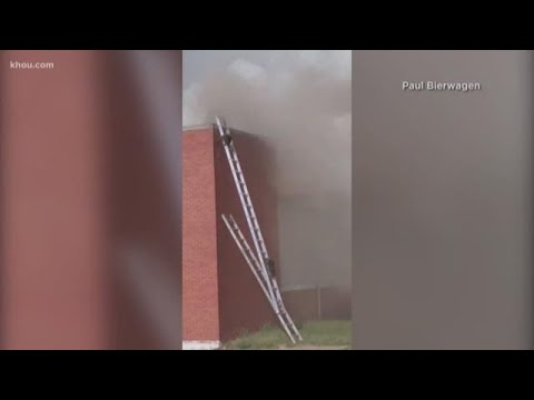 Mick Lee - Indiana Firefighters Set Up Ladders to Help Raccoons Escape Warehouse Fire