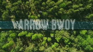 Arrow bwoy ft Timmy tdat -Mary Jane official video