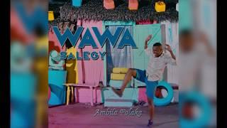Wawa Salegy - Ambila Folaka - audio