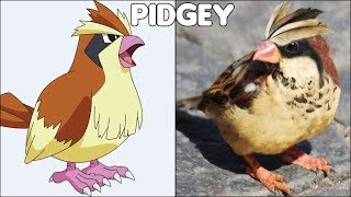 Pokemon In Real Life