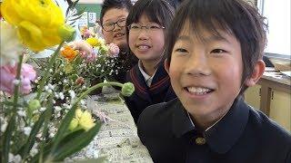 小学生がフラワーアレンジメントに挑戦 「花育授業」で個性が光る 香川・小豆島