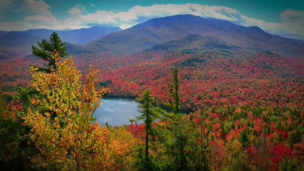 Fall Leaves Desktop Wallpaper Backgrounds Autumn Quot Golden Spell Quot Tv Commercial Visitadirondacks Com