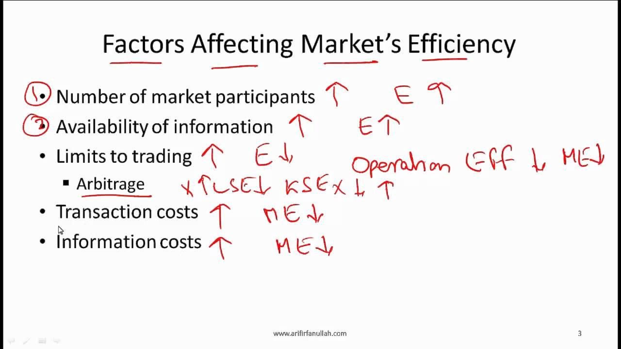 efficient market hypothesis essay