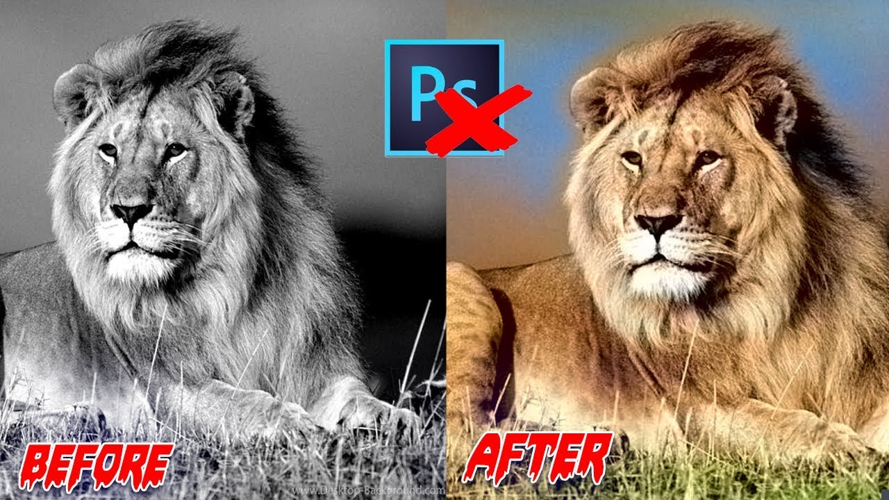 HOW TO CONVERT BLACK AND WHITE PHOTO TO COLOR ONLINE HOW TO CONVERT BLACK  AND WHITE PHOTO TO COLOR O