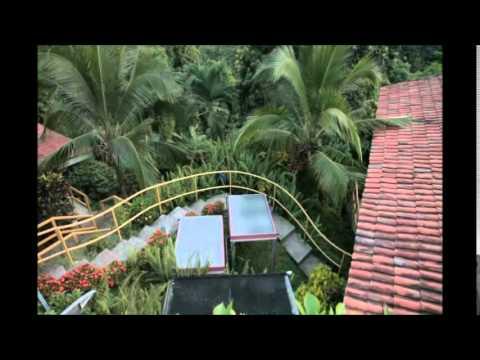 La Gallina de los Huevos de Oro: Turismo en la Costa Pacífica de Costa Rica - Versión Educativa