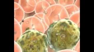 Иммунотерапия в онкологии http://rusonco.ru/(http://rusonco.ru/ Иммунотерапия в онкологии необходима абсолютно всем больным, а особенно этот метод подходит..., 2014-06-19T15:01:44.000Z)