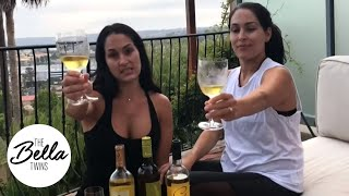 The Bella Twins celebrate National White Wine Day! (and ALMOST reveal their new wine name!)