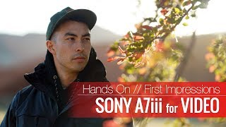 Sony A7iii Review for Filmmakers || Sony A7 iii VS Canon 1DX Mark ii