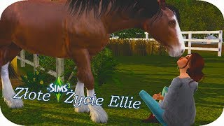 • The Sims 3 •  Złote Życie Ellie  • PAPI UGASI KAŻDY POŻAR!     Odc.9   