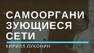 Беспроводные децентрализованные самоорганизующиеся сети(Кирилл Луконин Конференция
