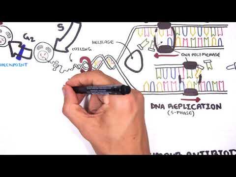 Pharmacology  - Chemotherapy Agents (MOA, Alkalating, Antimetabolites, Topoisomerase, Antimitotic )