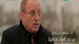 مصر_تستطيع | لقاء خاص مع أ.د|منصورالمتبولي عميد معهد الأسماك فى جامعة فيينا للطب البيطرى بالنمسا