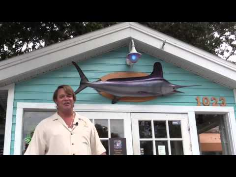 The Origin Of Thirsty The Marlin. Palm Harbor FL Fine Dining Seafood, And Awesome Bar!