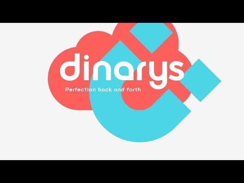 E-commerce Development Agency   IT Dienstleister Berlin   Dinarys