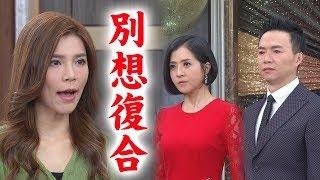 【炮仔聲】EP203 環環結婚好難搞!曉馨咒罵永誠復合家璇