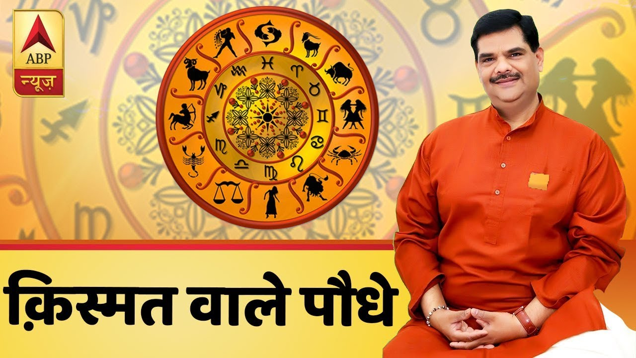 Know which plants can bring luck & prosperity for you | Guruji With Pawan Sinha | ABP News