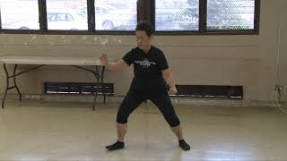 How Do You Turn Deflect Parry Punch? everydaytaichi lucy Honolulu Hawaii