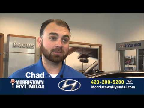 Why People Buy The 2016 Hyundai Veloster at Morristown Hyundai, Rally Edition Knoxville TN