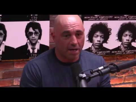 Joe Rogan Experience #461 - David Seaman from YouTube · Duration:  2 hours 55 minutes 20 seconds  · 65.000+ views · uploaded on 26.02.2014 · uploaded by PowerfulJRE