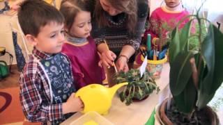Сюжетно-рольові ігри - Догляд за рослинами