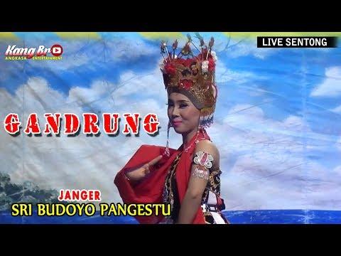 GANDRUNG KREASI - JANGER  SRI BUDOYO PANGESTU LIVE SENTONG