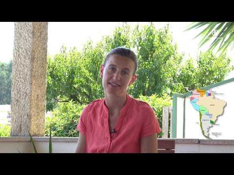 au-portugal-#17-:-le-café-et-ma-recette-du-tiramisu