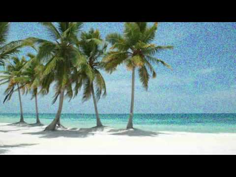 Dope Rodriguez  High Hawaiians 🏝   LOFI Instrumental