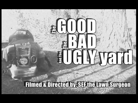 The Good,The Bad,and The Ugly Yard