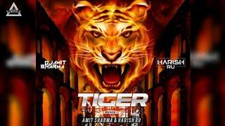 Tiger Remix   Tiger Dance   Amit Sharma x Harish Ru.   #Djwaala Present