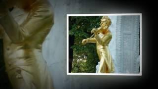 Les Valses De Vienne Johann Strauss