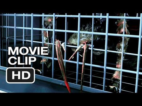 Spiders 3D Movie  1 2013 Christa Campbell, William Hope Movie HD