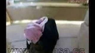 طائرة الوليد بن طلال الخاصه