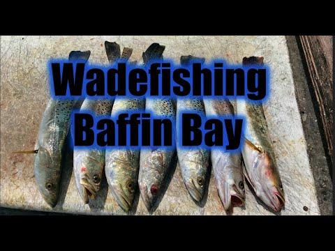 Wadefishing Baffin Bay