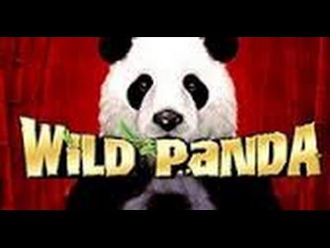 Wild Panda Slot Free