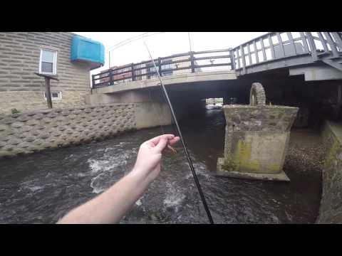 Trout Fishing In Lodi, Wisconsin.
