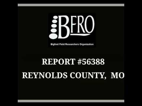 BFRO REPORT 56388 Photos