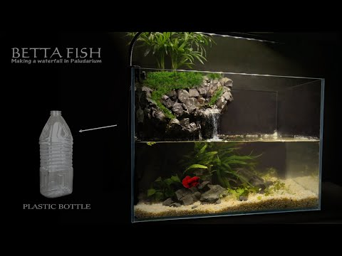 how-to-make-waterfall-with-plastic-bottle/diy/betta-fish/no-co2,no-filter,no-ferts