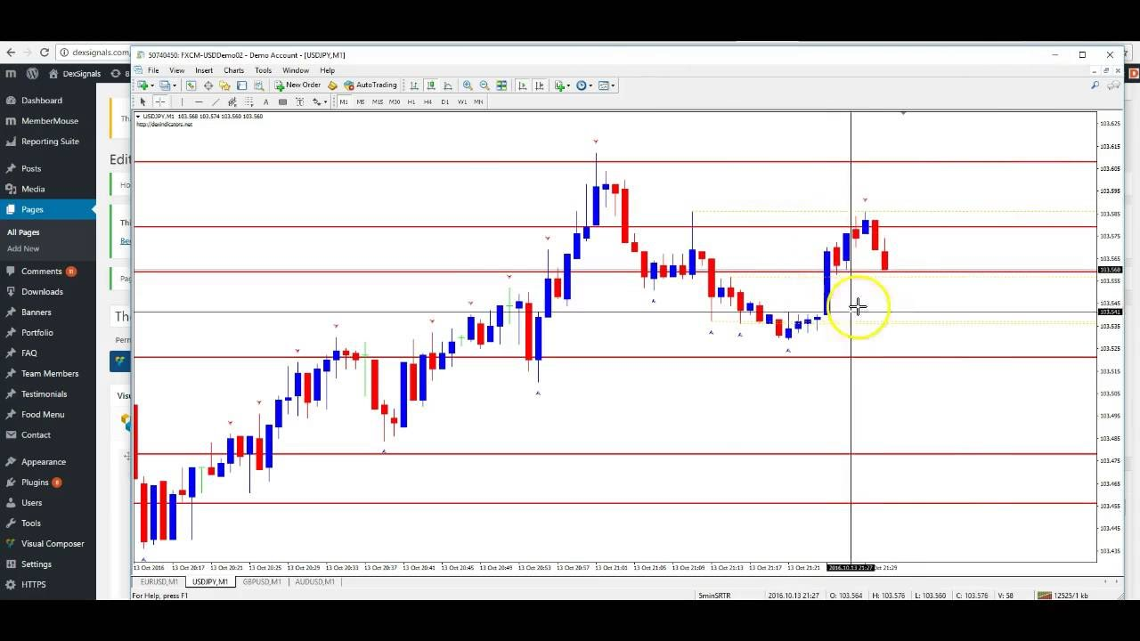 What is binary options millionaire blueprint