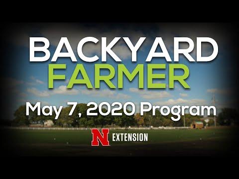Backyard Farmer May 7, 2020