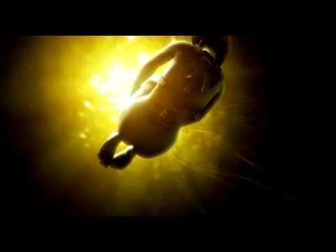 Ghost In The Shell 2: Innocence Intro (Original Score)