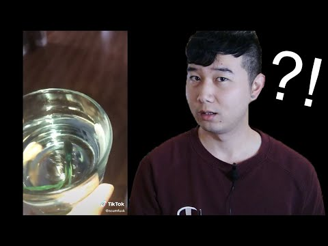 you-won't-believe-what-this-guy-did-to-get-more-views-on-tiktok-|-fish-tank-review-37